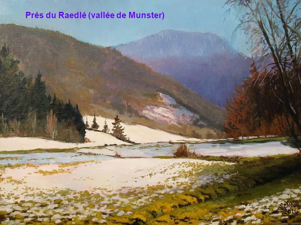 Prés du Raedlé (vallée de Munster)