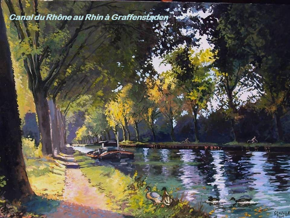 Canal du Rhône au Rhin à Graffenstaden