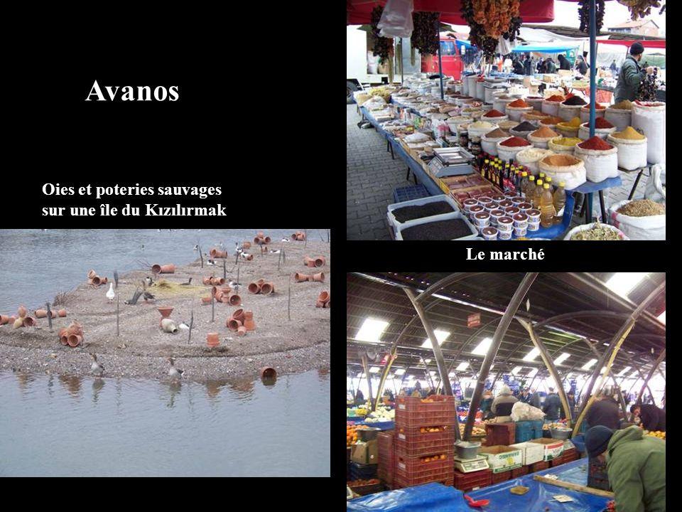 Oies et poteries sauvages sur une île du Kızılırmak Avanos Le marché