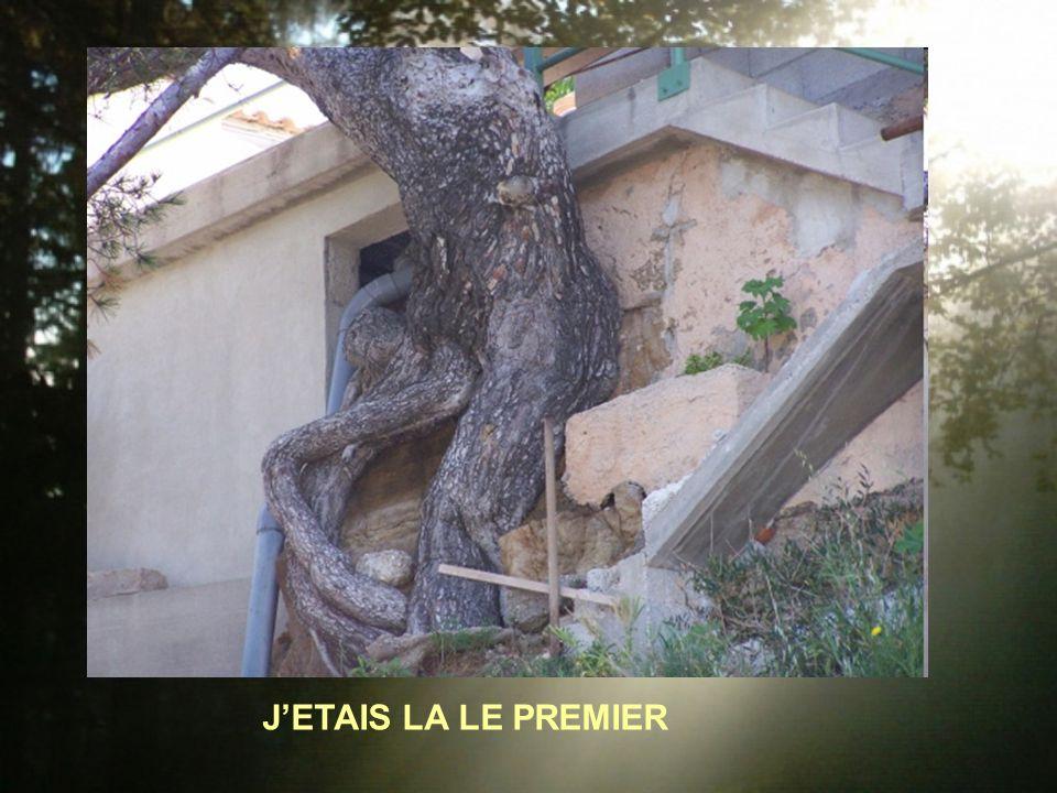 JETAIS LA LE PREMIER