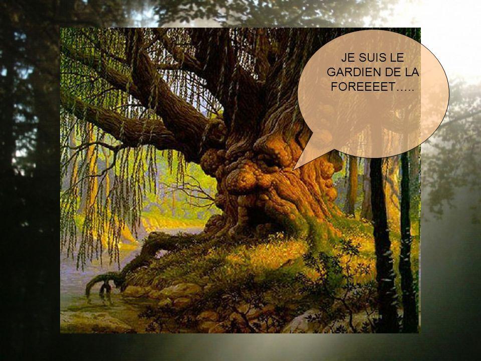 JE SUIS LE GARDIEN DE LA FOREEEET…..