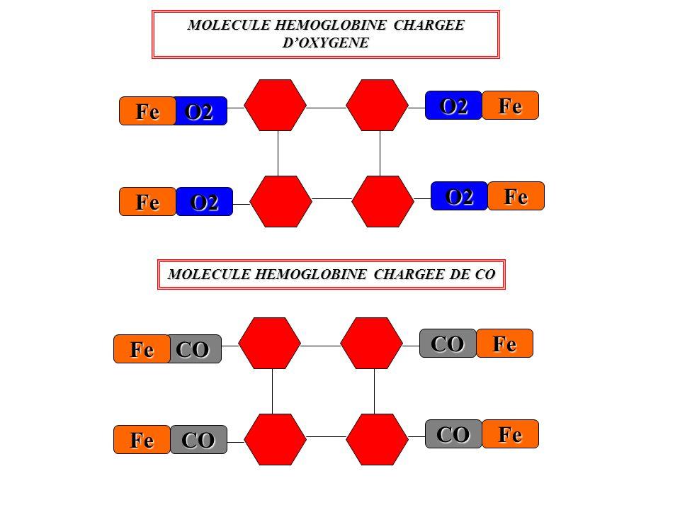 CO Fe Fe Fe CO CO CO Fe O2 Fe Fe Fe O2 O2 O2 Fe MOLECULE HEMOGLOBINE CHARGEE DOXYGENE MOLECULE HEMOGLOBINE CHARGEE DE CO