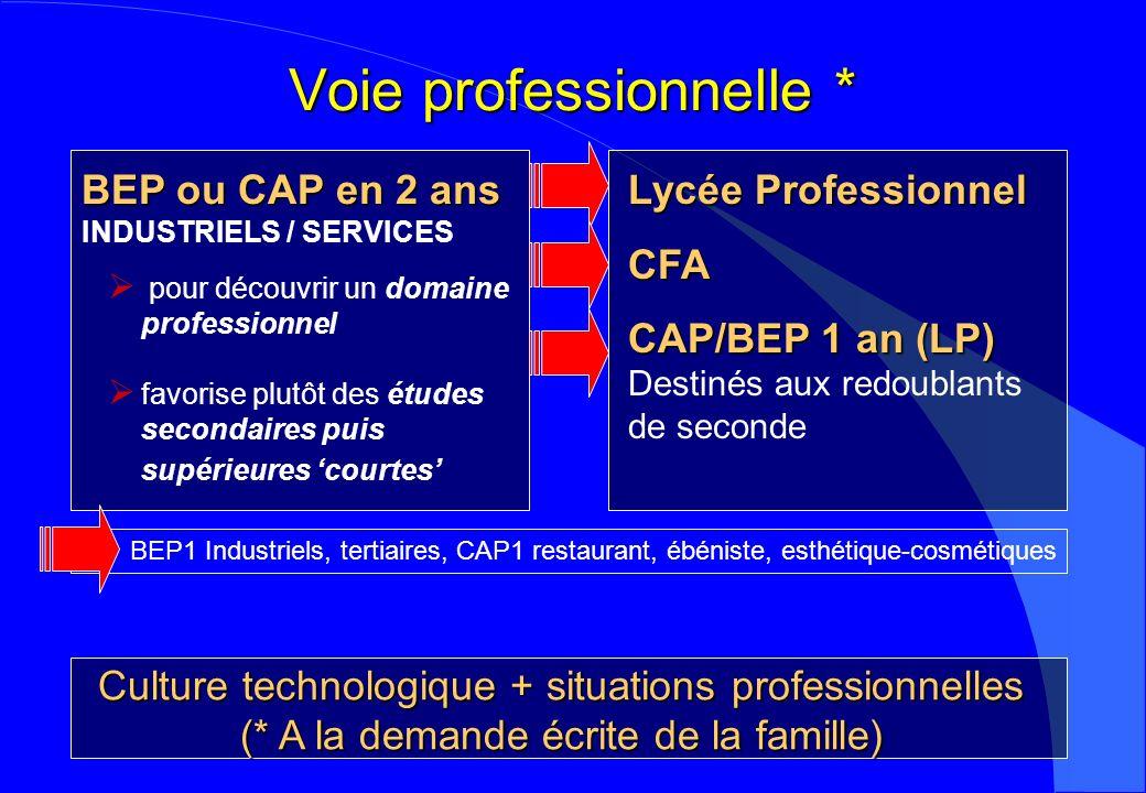 Voie professionnelle * Culture technologique + situations professionnelles (* A la demande écrite de la famille) BEP ou CAP en 2 ans INDUSTRIELS / SER