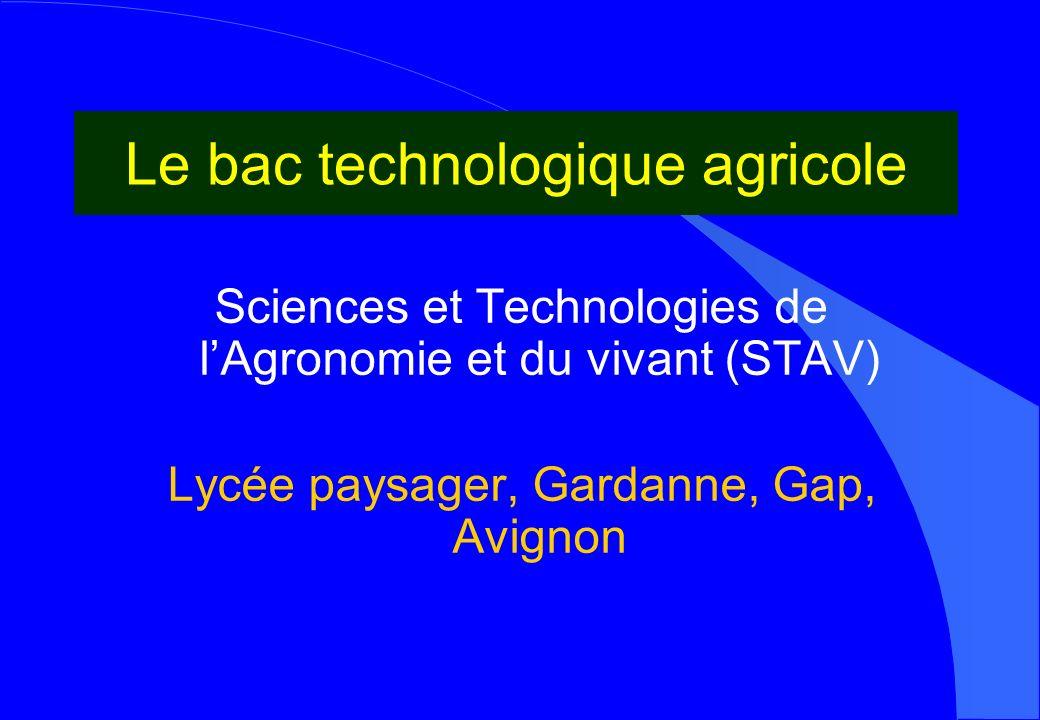 Le bac technologique agricole Sciences et Technologies de lAgronomie et du vivant (STAV) Lycée paysager, Gardanne, Gap, Avignon