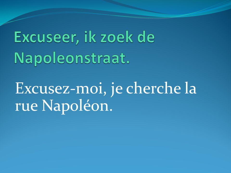 Excusez-moi, je cherche la rue Napoléon.