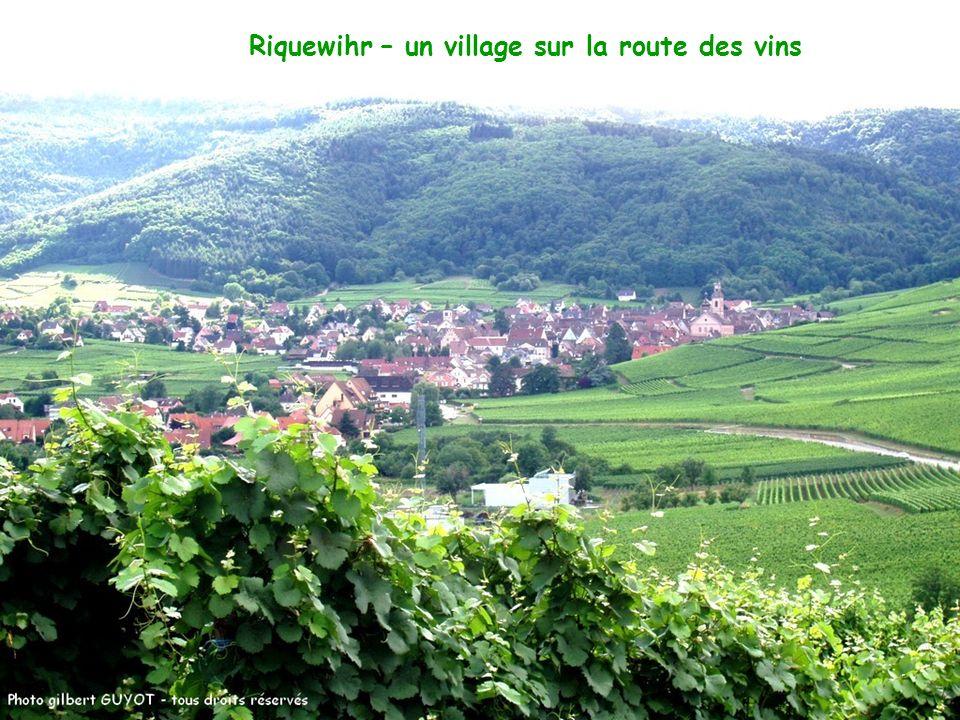 Riquewihr – un village sur la route des vins