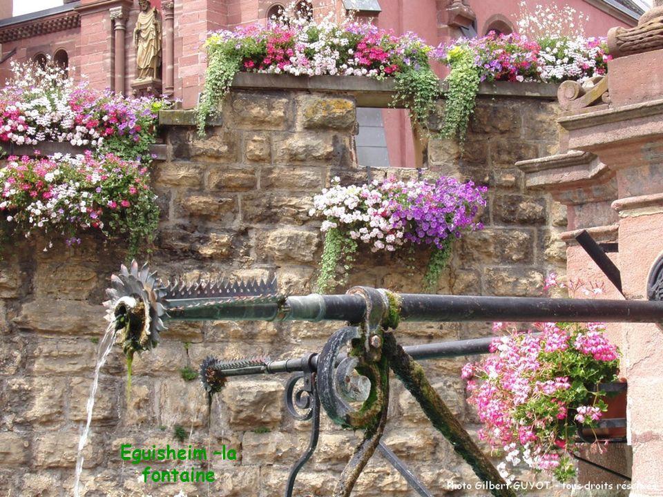 Eguisheim –la fontaine