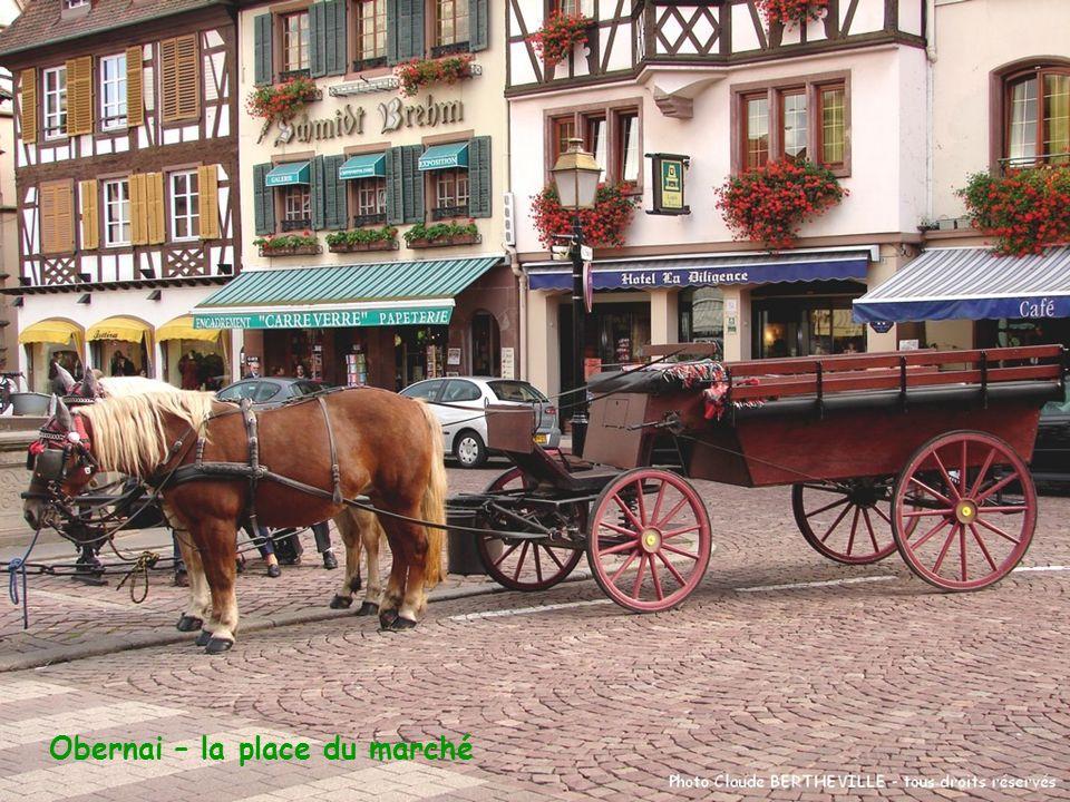 Obernai – la place du marché