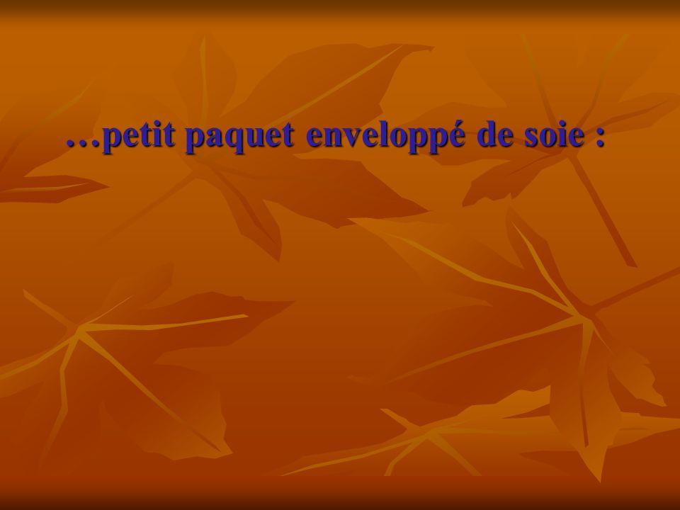 …petit paquet enveloppé de soie : …petit paquet enveloppé de soie :