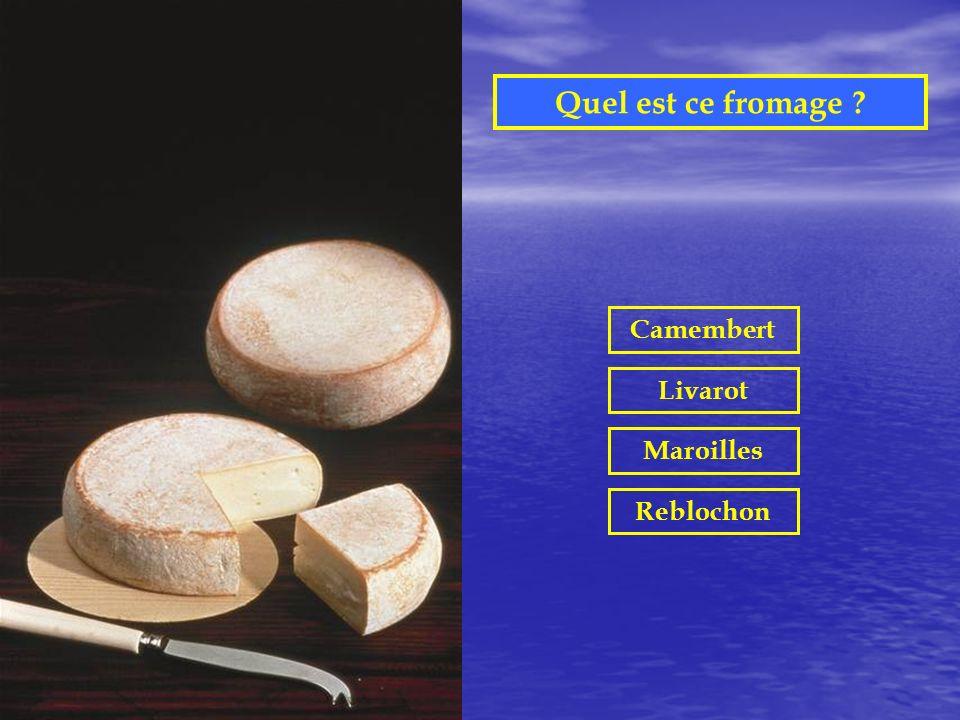 Quel est ce fromage ? Camembert Livarot Maroilles Reblochon
