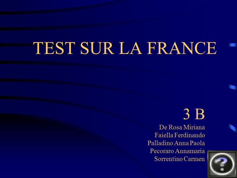 TEST SUR LA FRANCE 3 B De Rosa Miriana Faiella Ferdinando Palladino Anna Paola Pecoraro Annamaria Sorrentino Carmen