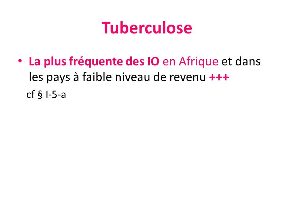 Tuberculose La plus fréquente des IO en Afrique et dans les pays à faible niveau de revenu +++ cf § I-5-a
