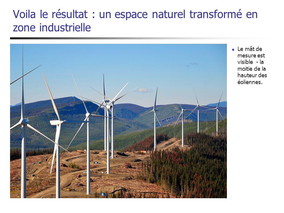 Voila le résultat : un espace naturel transformé en zone industrielle Le mât de mesure est visible - la moitie de la hauteur des éoliennes.