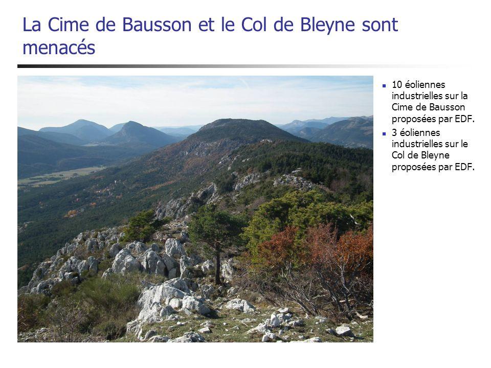 La Cime de Bausson et le Col de Bleyne sont menacés 10 éoliennes industrielles sur la Cime de Bausson proposées par EDF. 3 éoliennes industrielles sur