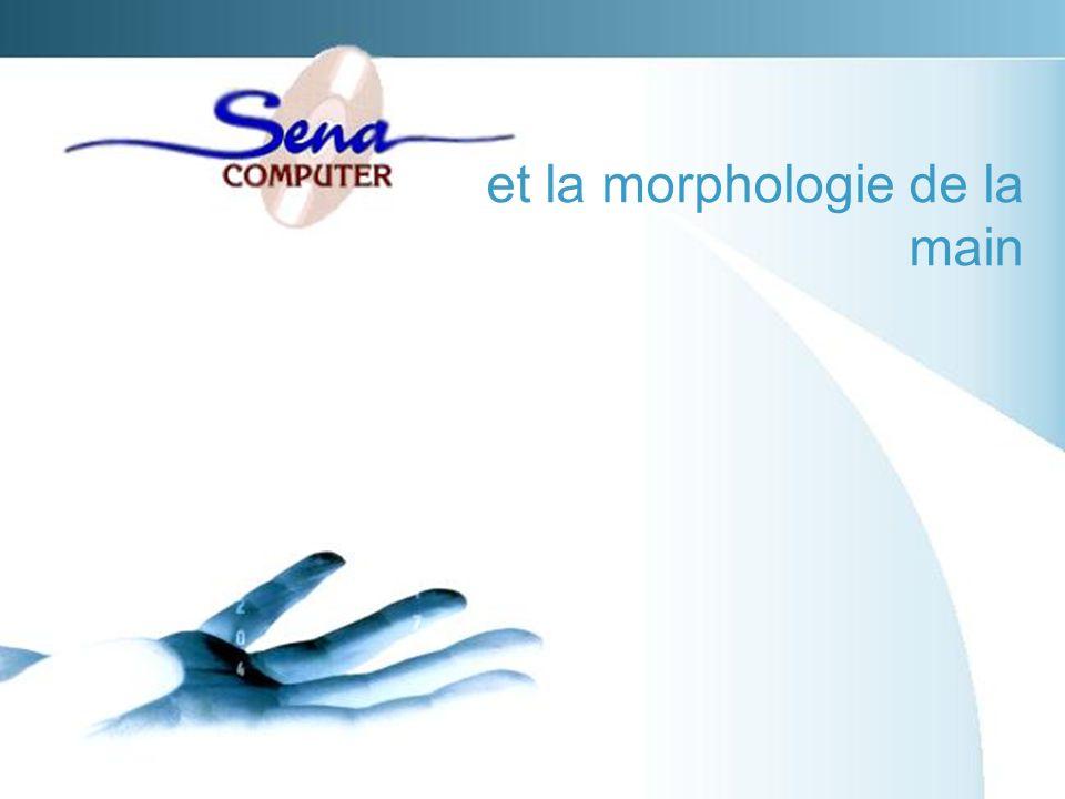 et la morphologie de la main