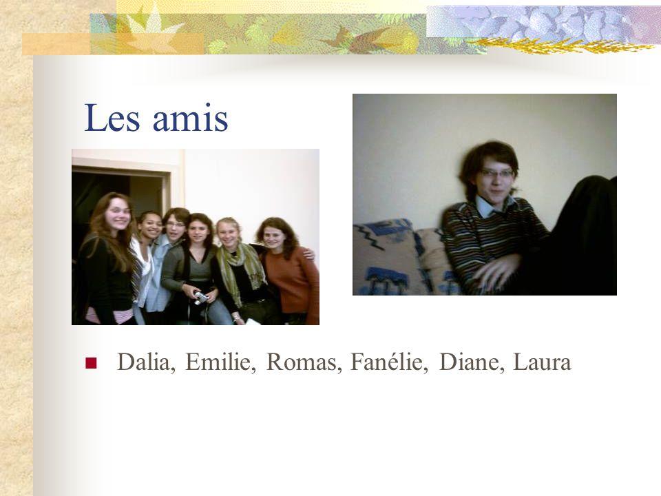 Les amis Dalia, Emilie, Romas, Fanélie, Diane, Laura