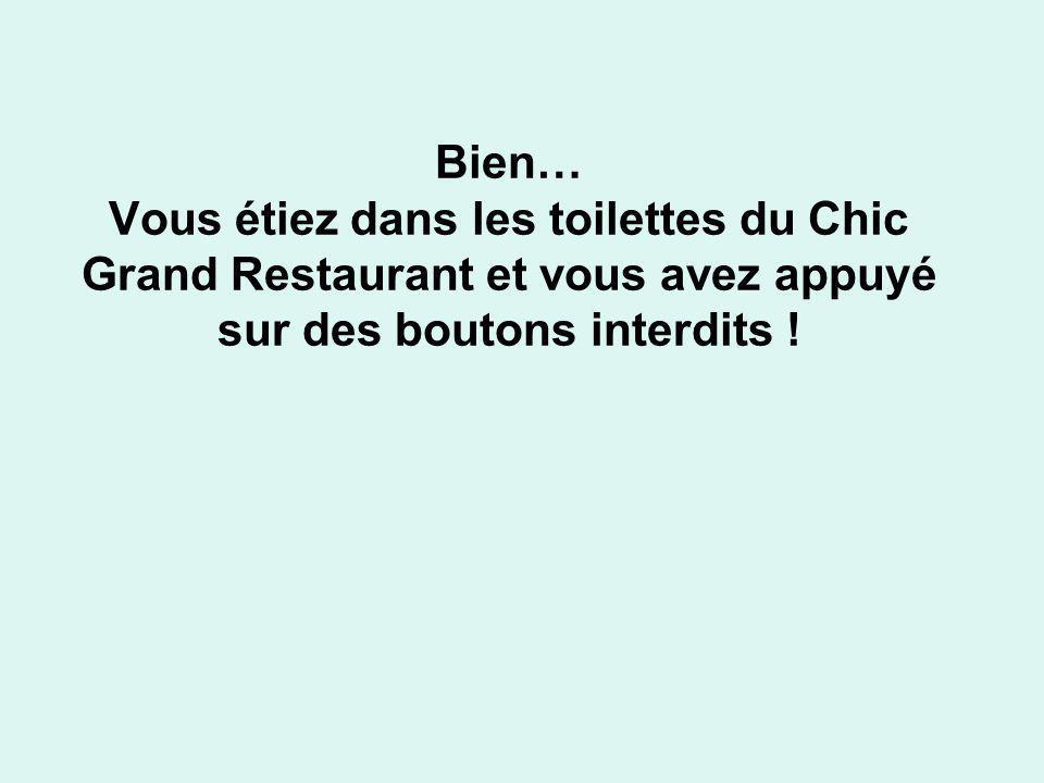 Bien… Vous étiez dans les toilettes du Chic Grand Restaurant et vous avez appuyé sur des boutons interdits !