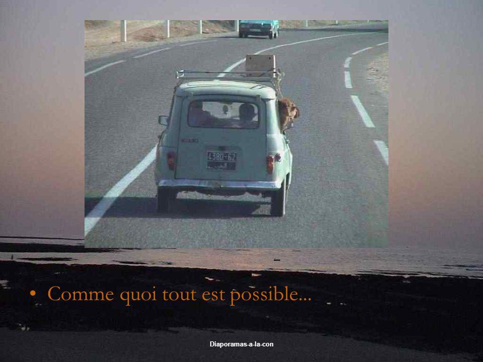Diaporamas-a-la-con Comme quoi tout est possible...