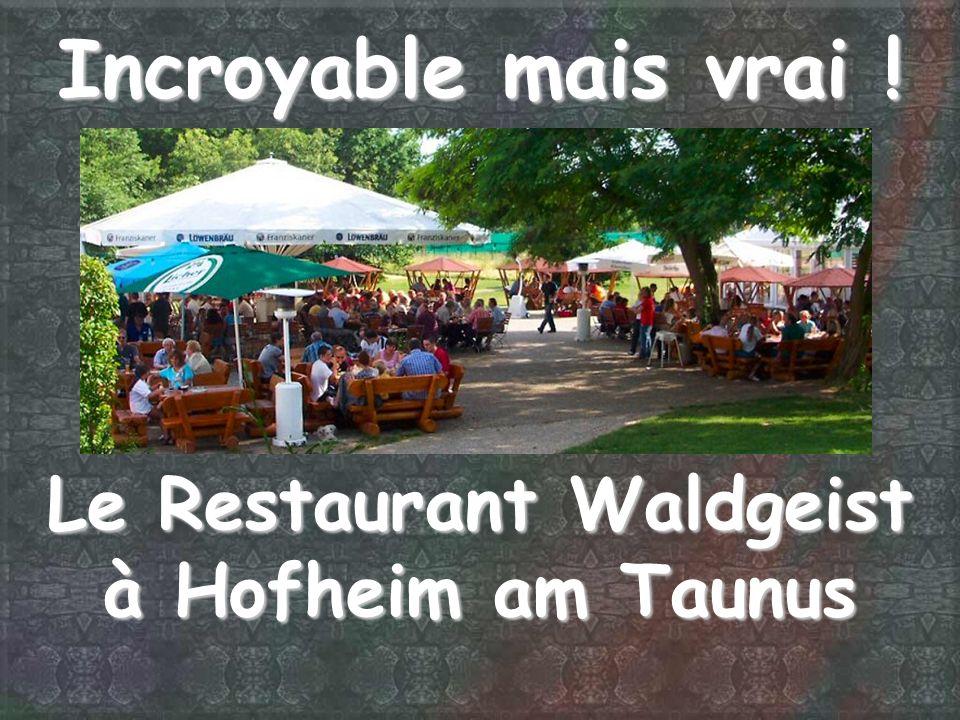 Incroyable mais vrai ! Le Restaurant Waldgeist à Hofheim am Taunus