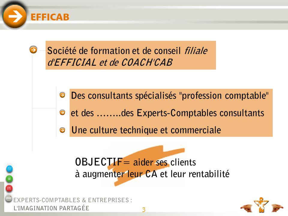3 EFFICAB Des consultants spécialisés