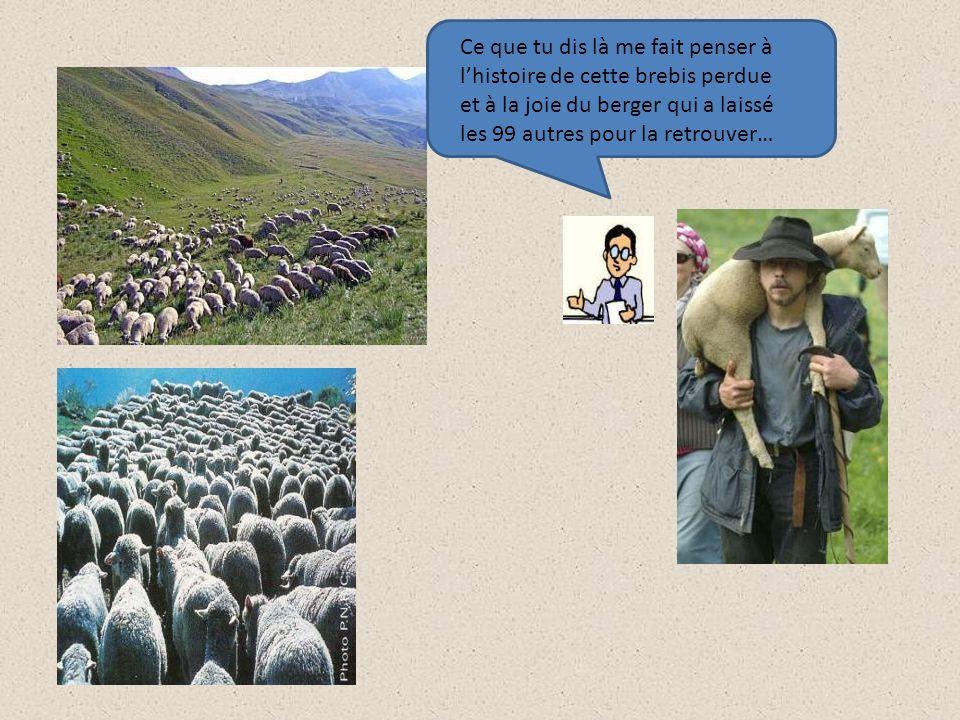 Ce que tu dis là me fait penser à lhistoire de cette brebis perdue et à la joie du berger qui a laissé les 99 autres pour la retrouver…