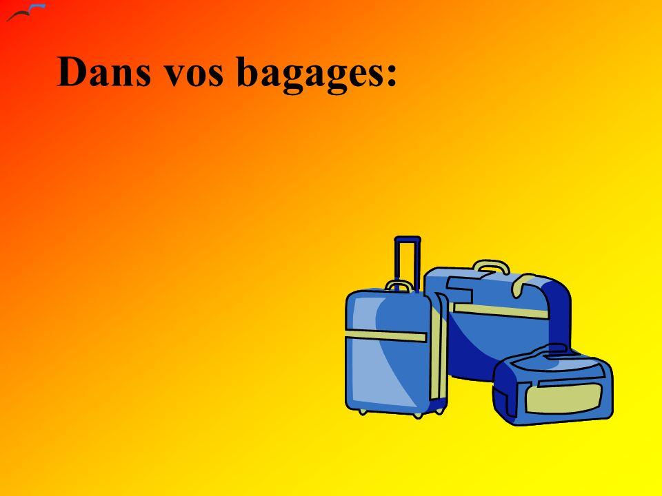 Dans vos bagages: