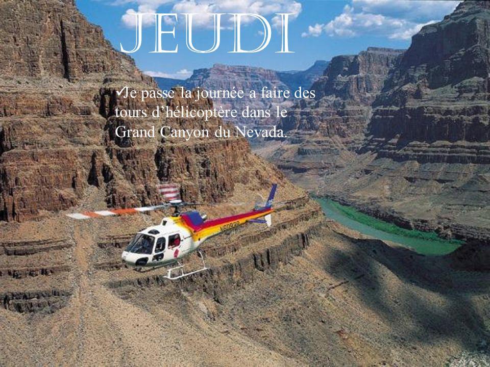 Jeudi Je passe la journée a faire des tours dhélicoptère dans le Grand Canyon du Nevada.