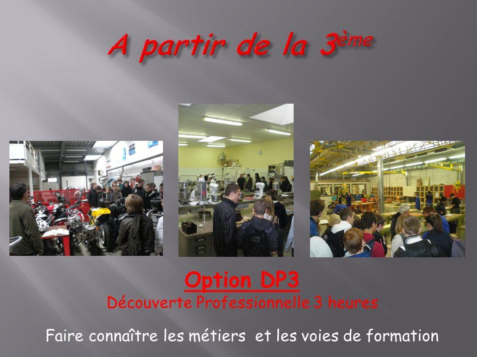 Option DP3 Découverte Professionnelle 3 heures Faire connaître les métiers et les voies de formation