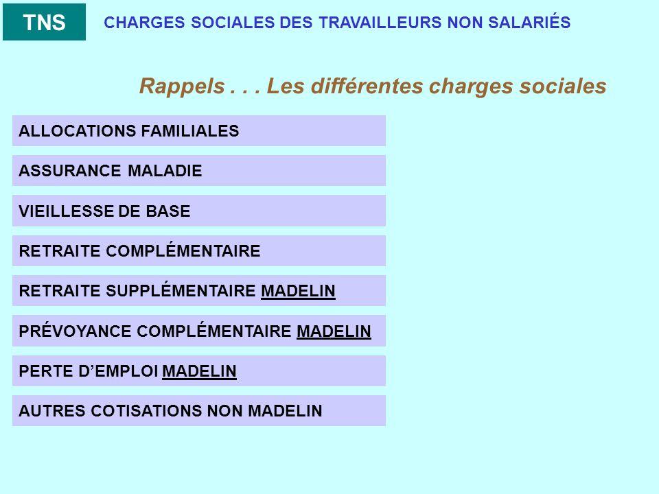 CHARGES SOCIALES DES TRAVAILLEURS NON SALARIÉS Rappels...