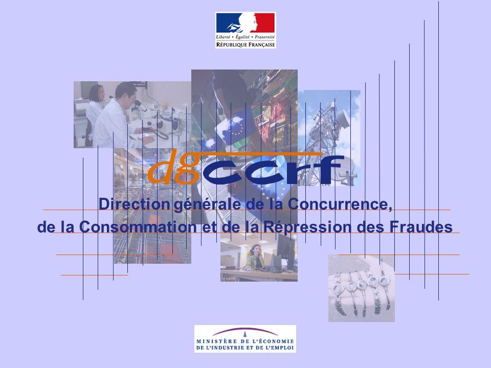 CCI – 16 février 2009 Délais de paiement Soldes Ventes au déballage Patrice DAUCHET Responsable unité CCRF du Loiret