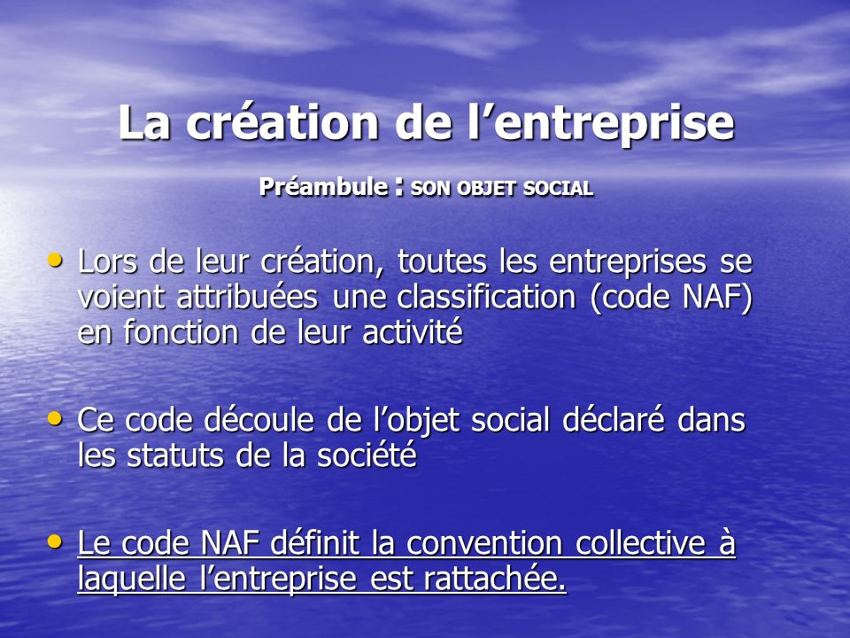 La création de lentreprise Préambule : SON OBJET SOCIAL Lors de leur création, toutes les entreprises se voient attribuées une classification (code NA
