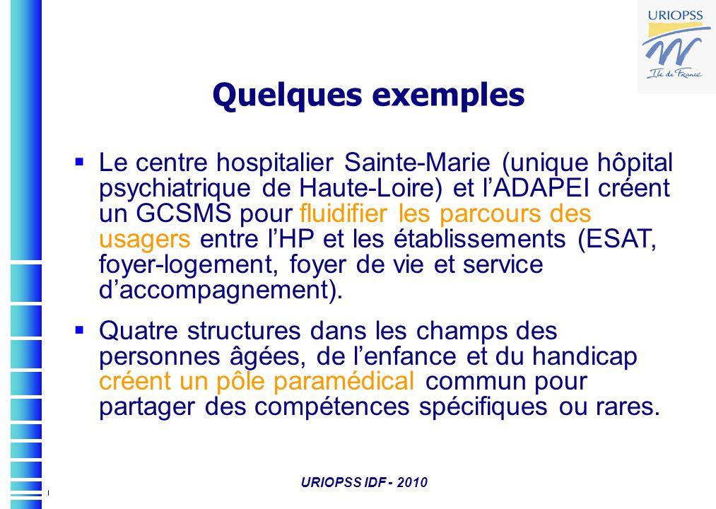 URIOPSS IDF - 2010 Quelques exemples Le centre hospitalier Sainte-Marie (unique hôpital psychiatrique de Haute-Loire) et lADAPEI créent un GCSMS pour