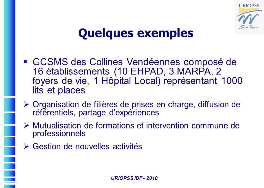 URIOPSS IDF - 2010 Quelques exemples GCSMS des Collines Vendéennes composé de 16 établissements (10 EHPAD, 3 MARPA, 2 foyers de vie, 1 Hôpital Local)