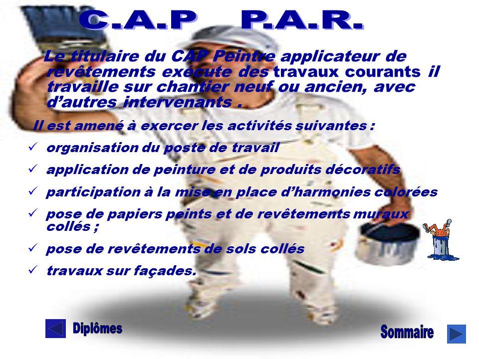 Le titulaire du CAP Peintre applicateur de revêtements exécute des travaux courants il travaille sur chantier neuf ou ancien, avec dautres intervenant