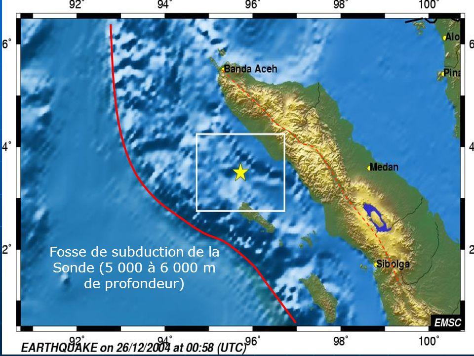 Fosse de subduction de la Sonde (5 000 à 6 000 m de profondeur)