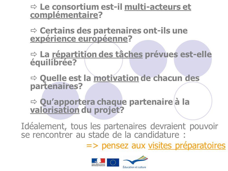 Le consortium est-il multi-acteurs et complémentaire? Certains des partenaires ont-ils une expérience européenne? La répartition des tâches prévues es