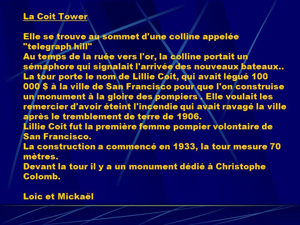 La Coit Tower Elle se trouve au sommet d'une colline appelée