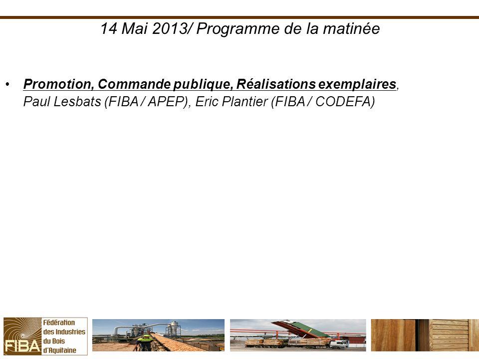 14 Mai 2013/ Programme de la matinée Promotion, Commande publique, Réalisations exemplaires, Paul Lesbats (FIBA / APEP), Eric Plantier (FIBA / CODEFA)