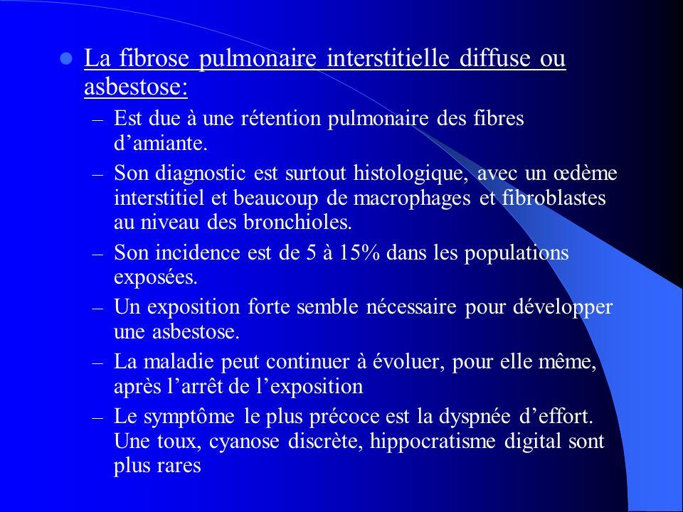 La fibrose pulmonaire interstitielle diffuse ou asbestose: – Est due à une rétention pulmonaire des fibres damiante. – Son diagnostic est surtout hist