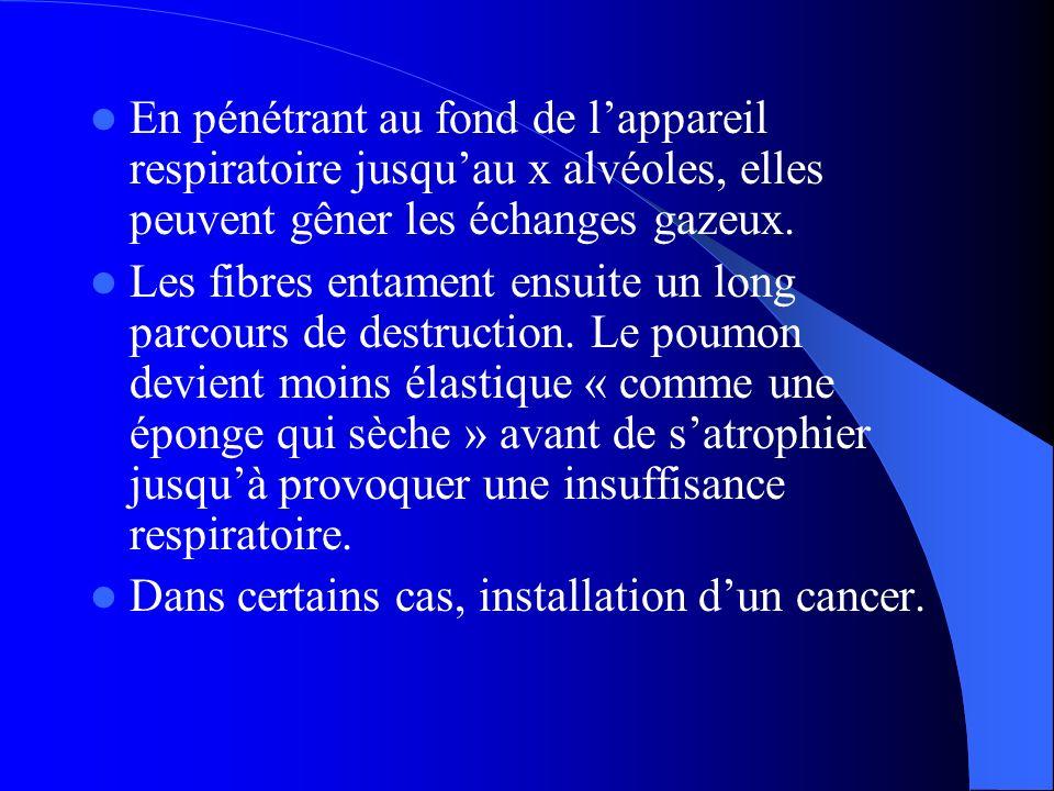 Le pronostic de la maladie d é pend fortement de la pr é cocit é de son diagnostic, de la localisation des tumeurs et de l é tat g é n é ral de sant é du patient.