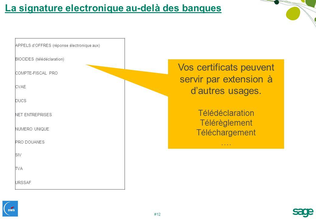 #12 La signature electronique au-delà des banques APPELS d'OFFRES (réponse électronique aux) BIOCIDES (télédéclaration) COMPTE-FISCAL PRO CVAE DUCS NE