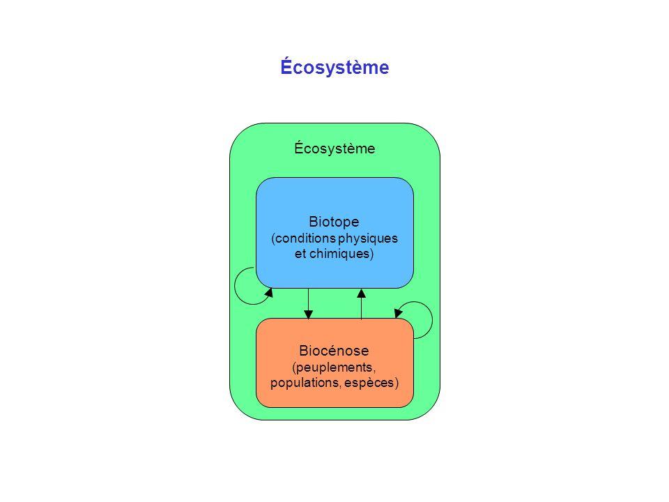 Biodiversité Espèce : « Groupe de populations naturelles effectivement ou potentiellement interfécondes, isolé par rapport aux groupes similaires sur le plan de la reproduction » - Mayr (1940) 1,7 M despèces connues pour 10 à 30 M despèces existantes estimées Niche écologique = spécialisation, « métier » de lespèce Un cas particulier : lhomme La biodiversité : diversité du vivant à 3 niveaux –à léchelle des gènes –à léchelle des espèces –à léchelle des écosystèmes –ça se traduit par l occupation de toutes les niches écologiques Une mauvaise question : à quoi ça sert .