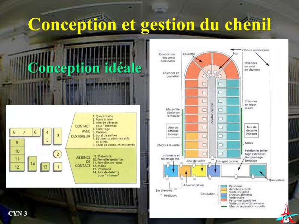 Conception idéale Conception et gestion du chenil CYN 3