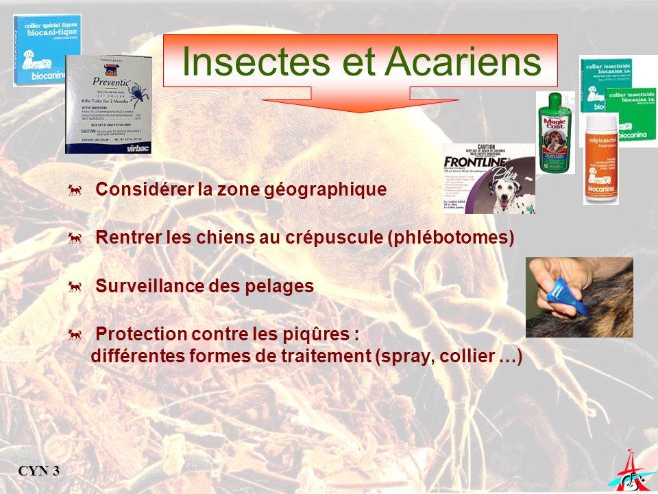 Insectes et Acariens Considérer la zone géographique Rentrer les chiens au crépuscule (phlébotomes) Surveillance des pelages Protection contre les piq