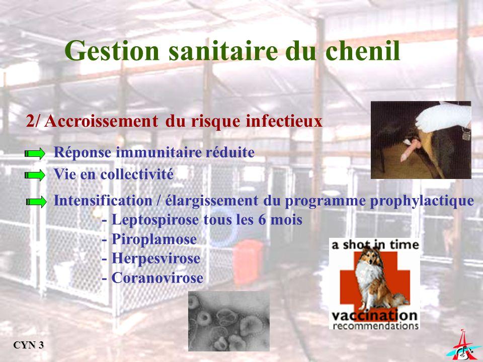 Gestion sanitaire du chenil Réponse immunitaire réduite Vie en collectivité 2/ Accroissement du risque infectieux Intensification / élargissement du p