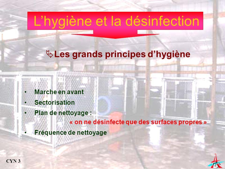 Lhygiène et la désinfection Les grands principes dhygiène Marche en avant Sectorisation Plan de nettoyage : « on ne désinfecte que des surfaces propre