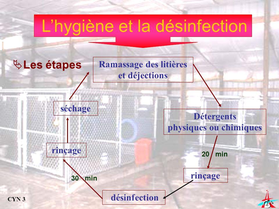 Lhygiène et la désinfection Les étapes Ramassage des litières et déjections Détergents physiques ou chimiques rinçage désinfection rinçage séchage 30