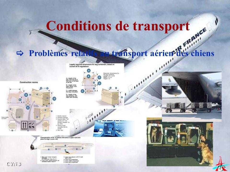 Conditions de transport Problèmes relatifs au transport aérien des chiens CYN 3