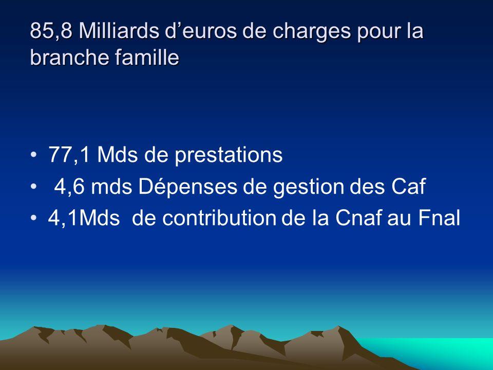 85,8 Milliards deuros de charges pour la branche famille 77,1 Mds de prestations 4,6 mds Dépenses de gestion des Caf 4,1Mds de contribution de la Cnaf au Fnal