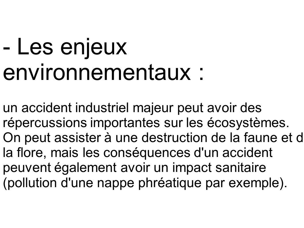 - Les enjeux environnementaux : un accident industriel majeur peut avoir des répercussions importantes sur les écosystèmes. On peut assister à une des